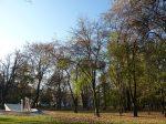 Il Planty, il parco che circonda la città vecchia, dove sorgevano un tempo le mura